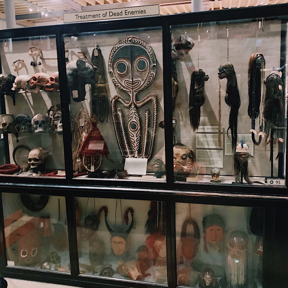 pitt rivers, secret oxford, wunderkammer, cabinet curiosities, oddities,