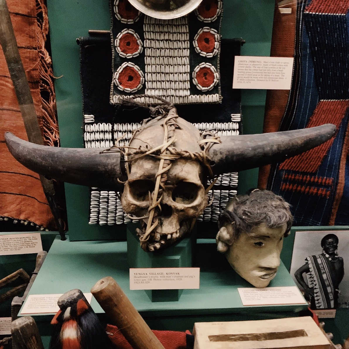Pitt rivers museum, wunderkammer, cabinet of curiosities, oddities,